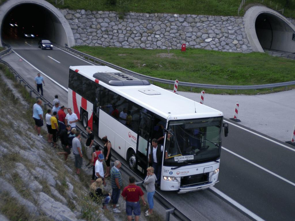 Dolenjska 2011